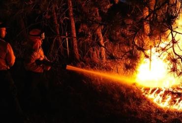Clases Teóricas Para Bombero Forestal