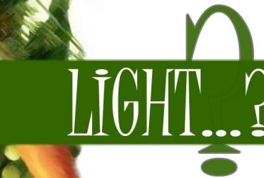 ALIMENTOS LIGHT, GRASAS Y AZÚCAR
